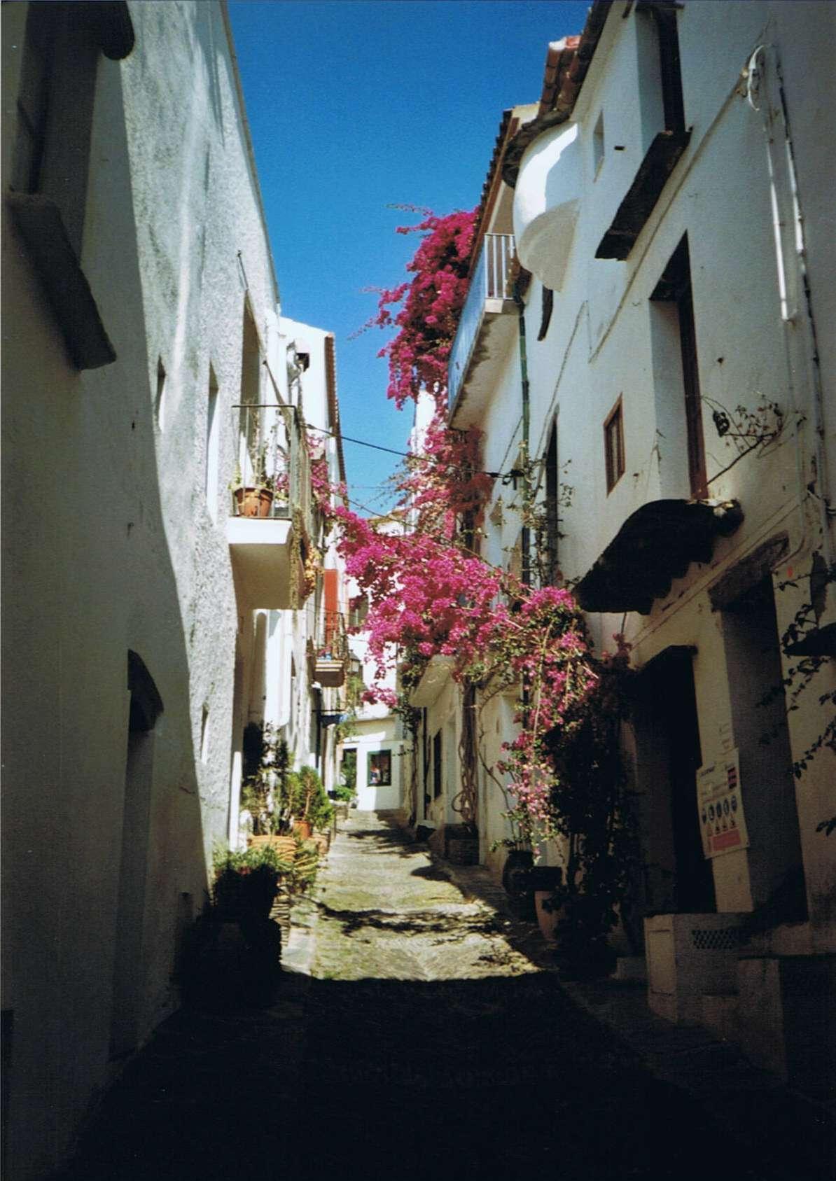 El Port Selva