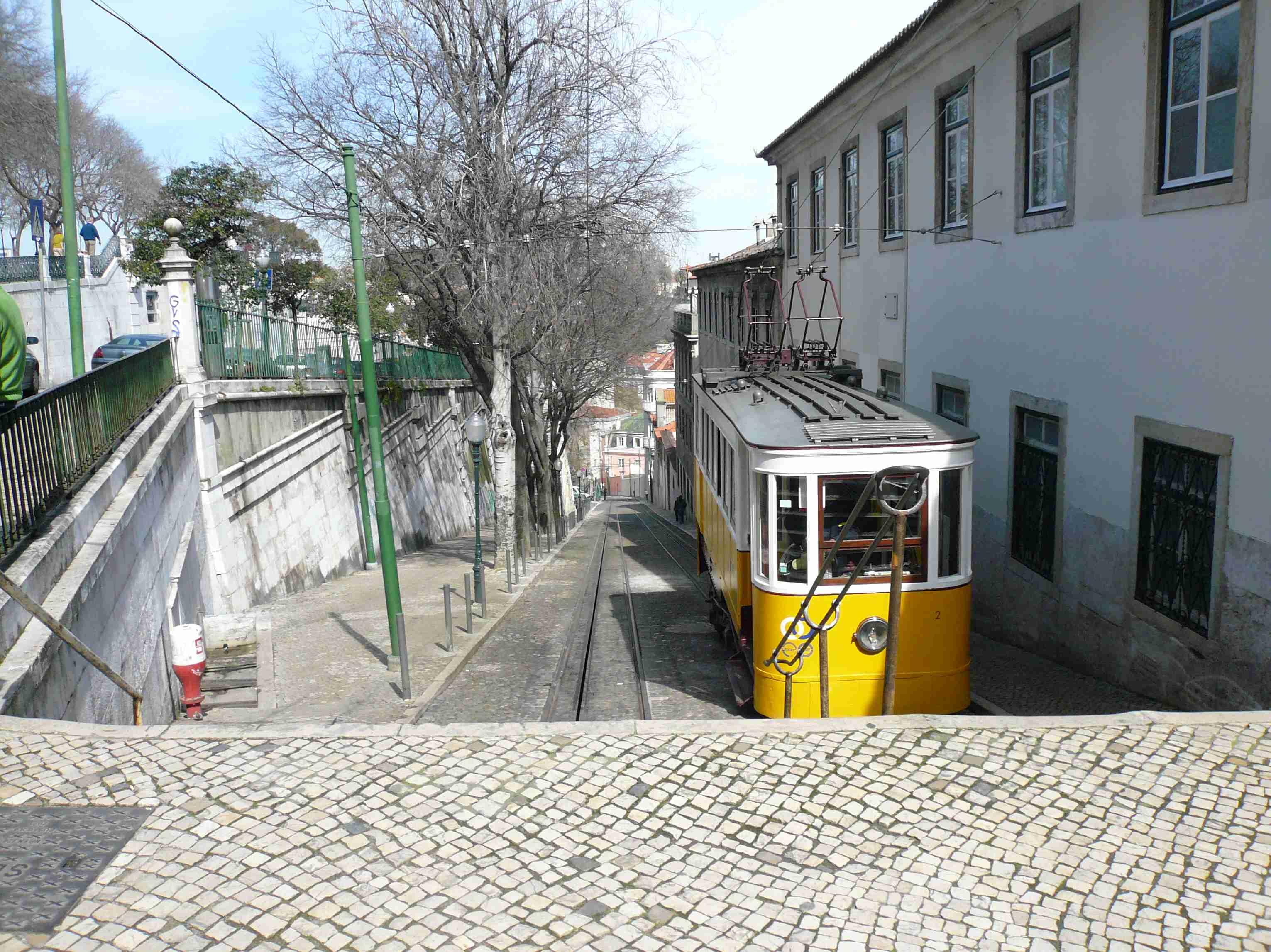 Calçada do Duque